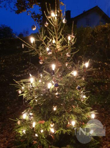 Weihnachtsbaum Ab Wann.Weihnachtsbaum Und Hüttenzauber Am Kuckuckstreff Taunus Nachrichten